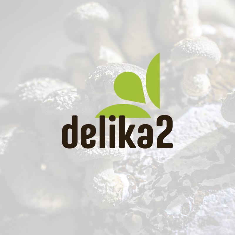 AFG Estudio Creativo Delika2 Branding